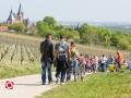 FB-20140413-Schlemmerwanderung-FB136377